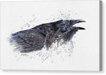 Raven 2 Canvas Print by Kathie Miller