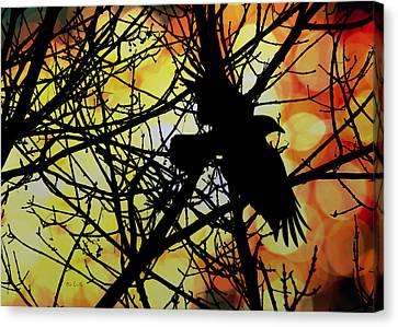 Raven Canvas Print by Bob Orsillo