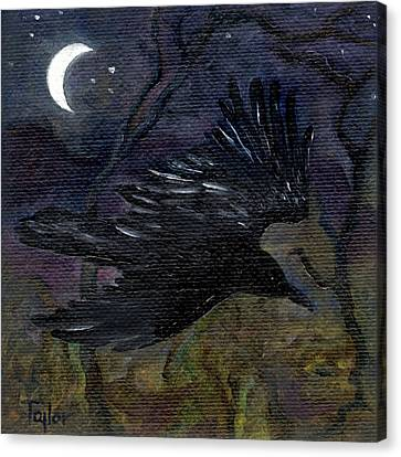 Raven In Stars Canvas Print