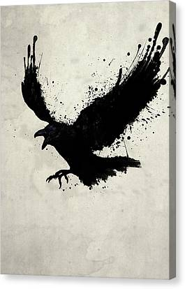 Bird Canvas Print - Raven by Nicklas Gustafsson