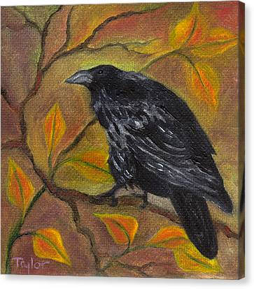 Raven On A Limb Canvas Print