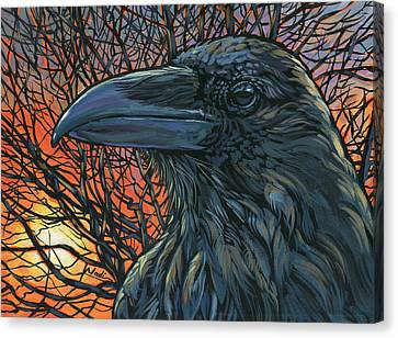 Raven Orange Canvas Print by Nadi Spencer