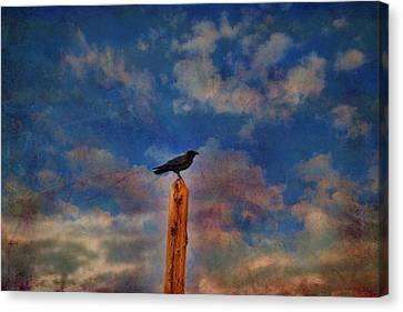 Canvas Print featuring the photograph Raven Pole by Jan Amiss Photography