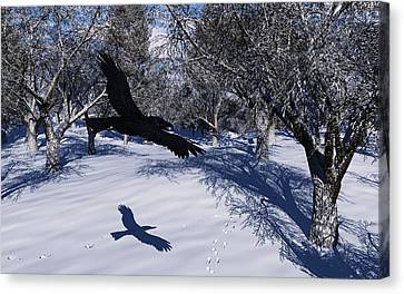 Raven Tracking Canvas Print by Diana Morningstar