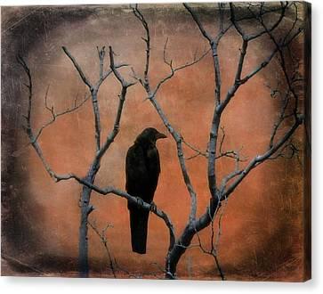 Rustic Raven Tree Canvas Print