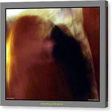 Raven Visits Canvas Print by Jane Tripp