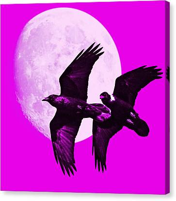 Ravens Of The Moon . Magenta Square Canvas Print by Wingsdomain Art and Photography