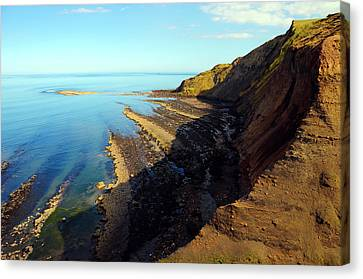 Ravenscar Cliffs Canvas Print by Svetlana Sewell
