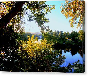 Canvas Print featuring the photograph Rawdon by Elfriede Fulda
