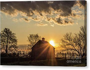 Ray Of Light Canvas Print by Doug Daniels