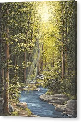 Ray Of Light Canvas Print by Julie Ethridge