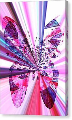 Rays Of Butterfly Canvas Print by Amanda Eberly-Kudamik