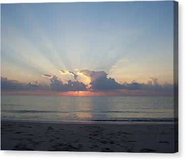 Canvas Print featuring the photograph Rays Of Light by Sheila Silverstein