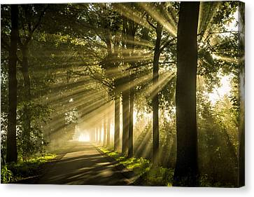 Rays Track Canvas Print by Martin Podt