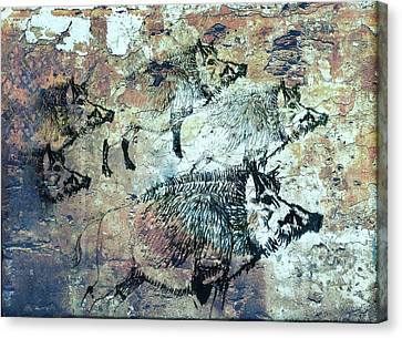 Wild Boars Canvas Print by Larry Campbell