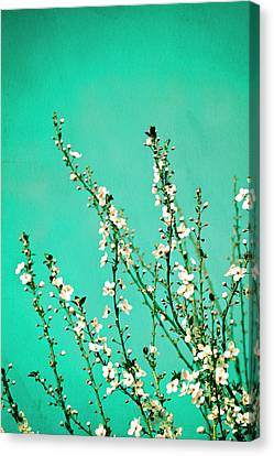 Reach - Botanical Wall Art Canvas Print