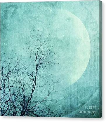 Bough Canvas Print - Reach For The Moon by Priska Wettstein