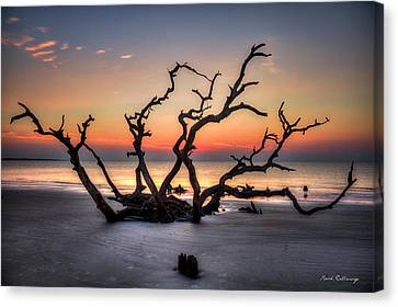 Reaching Driftwood Beach Sunrise Jekyll Island Georgia Art Canvas Print by Reid Callaway
