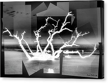 Reaching For You Bw Driftwood Beach Jekyll Island Art Canvas Print by Reid Callaway