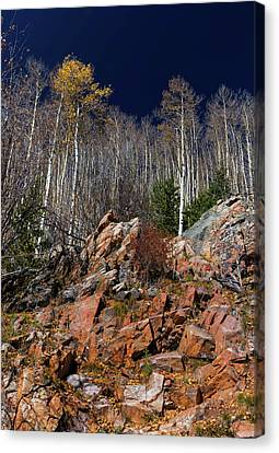 Canvas Print featuring the photograph Reaching Into Blue by Stephen Anderson