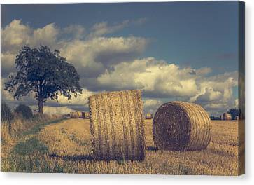 Reaching The End Of Summer Canvas Print by Chris Fletcher