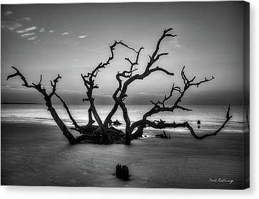 Reaching Too Driftwood Beach Sunrise Jekyll Island Georgia  Jekyll Is Canvas Print by Reid Callaway