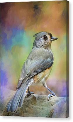 Ready For The Morning Bath Songbird Art Canvas Print by Jai Johnson
