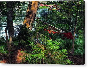 Ready To Explore Canvas Print by David Patterson