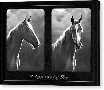 Real Good Looking Boy Canvas Print by Hazy Apple