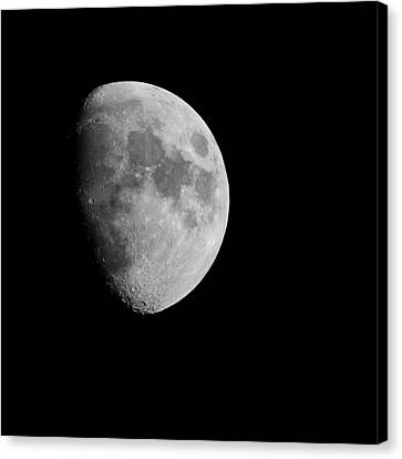 Real Moon Canvas Print by Tom Dowd