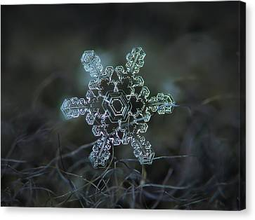 Real Snowflake - Slight Asymmetry New Canvas Print