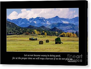 Reap A Harvest Canvas Print