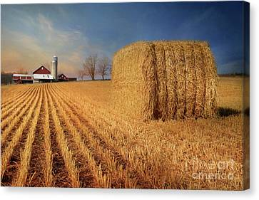 Reap The Harvest Canvas Print