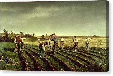 Reaping Sainfoin In Chambaudouin Canvas Print