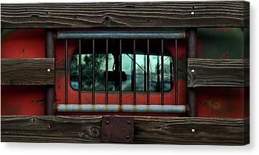 Rear Window Canvas Print by Murray Bloom