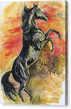 Rearing Canvas Print by Jana Goode