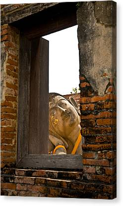 Reclining Buddha View Through A Window Canvas Print by Ulrich Schade