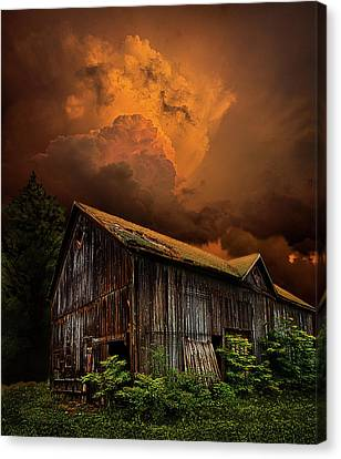 Natur Canvas Print - Recluse by Phil Koch