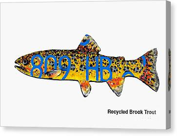 Recycled Brook Trout Canvas Print