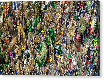 Recycled Plastic Bottles Canvas Print by David Buffington
