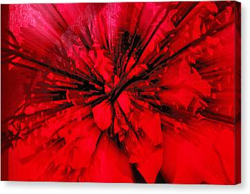 Canvas Print featuring the photograph Red And Black Explosion by Susan Capuano