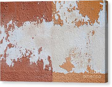 Red And Orange Abstract Canvas Print by Elena Elisseeva