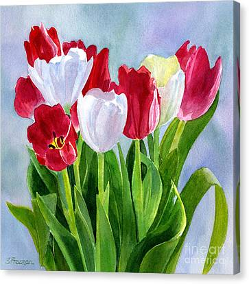 Red And White Tulip Bouquet Canvas Print