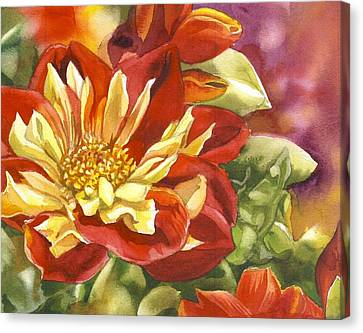 Red And Yellow Dahlias Watercolor Canvas Print by Alfred Ng