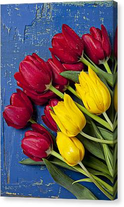 Red And Yellow Tulips Canvas Print by Garry Gay