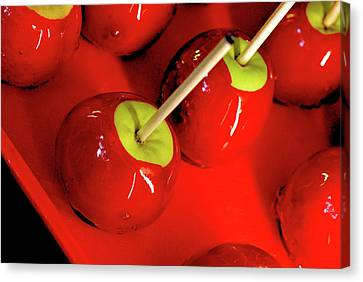 Red Apples Canvas Print by Priscilla Huber