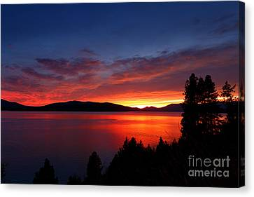 Red At Night Canvas Print