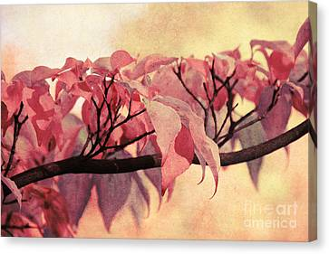 Red Autumn Day Canvas Print by Angela Doelling AD DESIGN Photo and PhotoArt