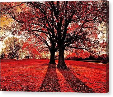 Red Autumn Canvas Print by E Robert Dee