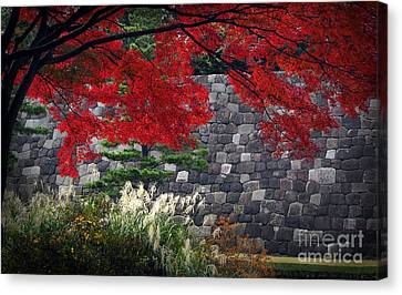 Red Autumn Canvas Print by Eena Bo
